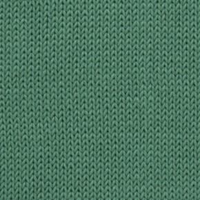 C-244 Verde Hoja